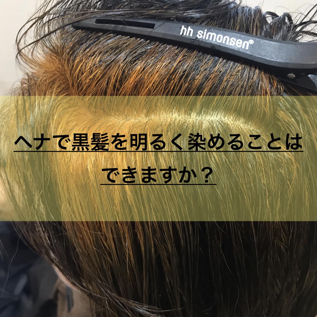 100%天然のヘナカラーで染めた黒髪部分の状態