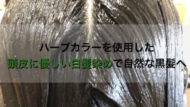 ハーブカラーを使用した頭皮に優しい白髪染めで自然な黒髪へ