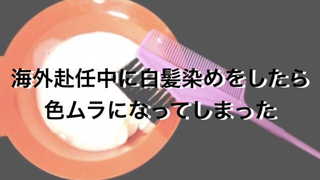 さいたま市南浦和の白髪染め専門美容院Safe Beauのブログのアイキャッチ画像